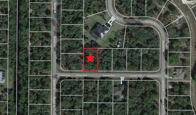Lot 12 Conus Avenue, North Port, FL 34288 (MLS #C7448166) :: Globalwide Realty
