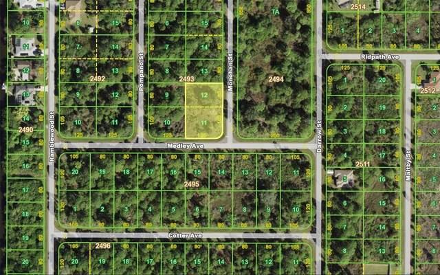 105 Monohan Street, Port Charlotte, FL 33953 (MLS #C7448225) :: GO Realty