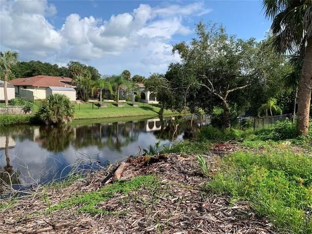 1066 Strasburg Drive, Port Charlotte, FL 33952 (MLS #C7448444) :: Globalwide Realty