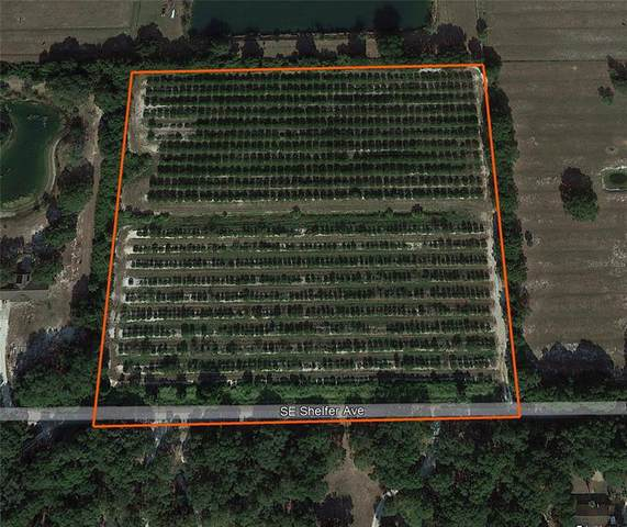SE Shelfer Avenue A, Arcadia, FL 34266 (MLS #C7448583) :: Keller Williams Suncoast