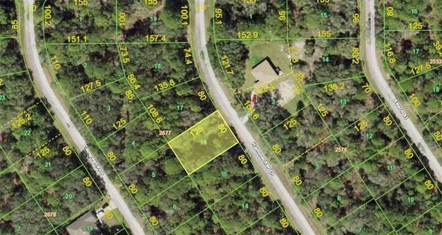 1161 Hammacher Lane, Port Charlotte, FL 33953 (MLS #C7448627) :: Vacasa Real Estate