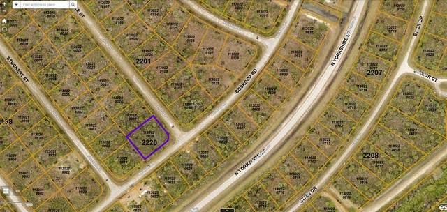 Boskoop Road, North Port, FL 34288 (MLS #C7448658) :: Gate Arty & the Group - Keller Williams Realty Smart