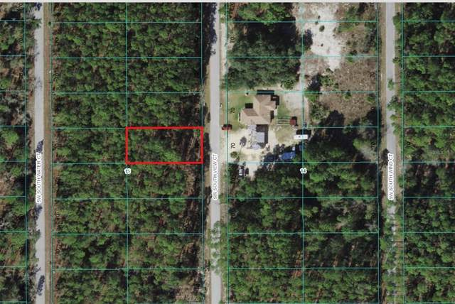 Sw South View Court, Dunnellon, FL 34431 (MLS #C7448804) :: Southern Associates Realty LLC