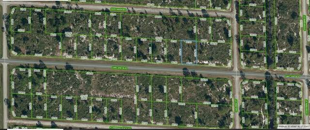 3441 Lake June Boulevard, Lake Placid, FL 33852 (MLS #C7448928) :: Vacasa Real Estate