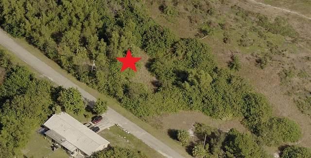 645 Creuset Avenue S, Lehigh Acres, FL 33974 (MLS #C7449015) :: Premium Properties Real Estate Services