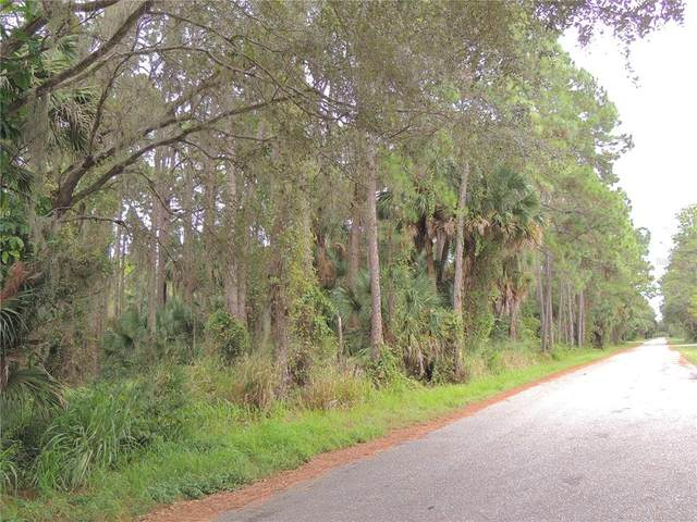 17434 & 17442 Geddes Avenue, Port Charlotte, FL 33954 (MLS #C7449059) :: Globalwide Realty