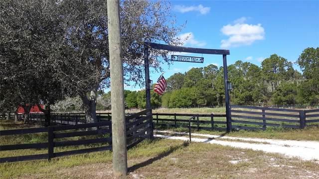 10221 SE Highway 31, Arcadia, FL 34266 (MLS #C7449063) :: Vacasa Real Estate