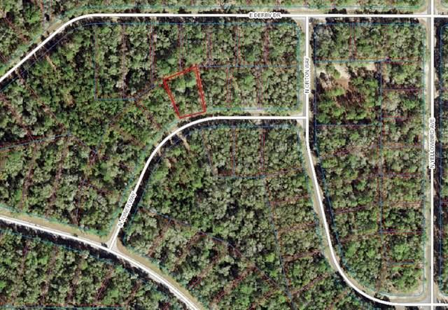 8364 N Joiner Way, Citrus Springs, FL 34434 (MLS #C7449065) :: Zarghami Group