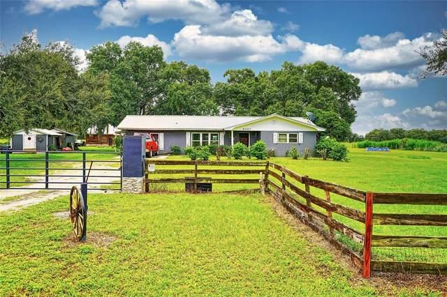 6067 SW Wilcox Street, Arcadia, FL 34266 (MLS #C7449066) :: Prestige Home Realty