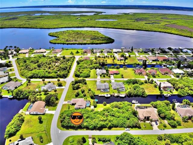 17431 Skipper Lane, Port Charlotte, FL 33948 (MLS #C7449069) :: Keller Williams Realty Peace River Partners