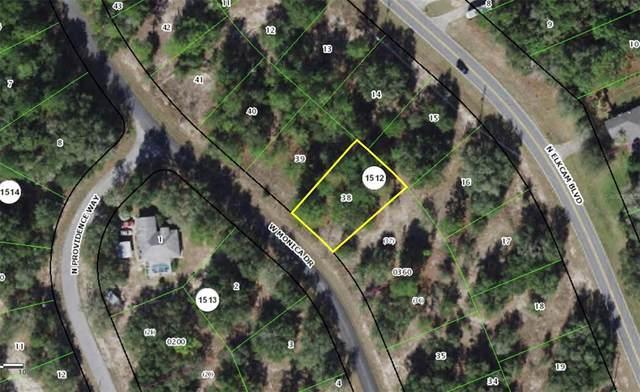 11847 Monica Drive, Citrus Springs, FL 34433 (MLS #C7449191) :: Carmena and Associates Realty Group