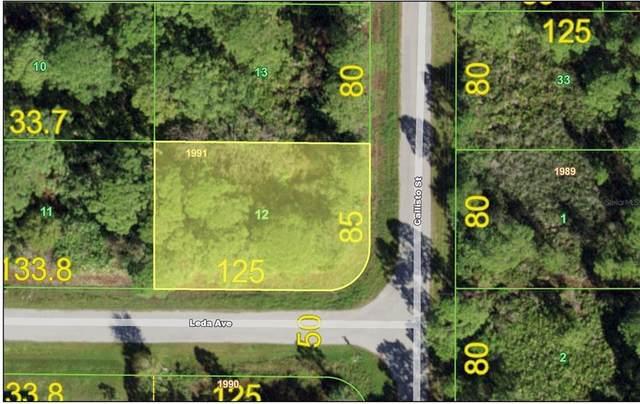 3119 Callisto Street, Port Charlotte, FL 33981 (MLS #C7449255) :: The Hustle and Heart Group