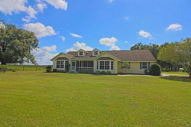 5549 SW Owens School Street, Arcadia, FL 34266 (MLS #C7449286) :: Everlane Realty