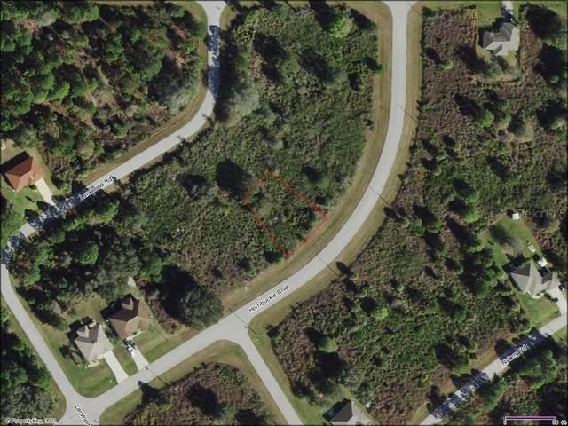 Hornbuckle Boulevard, North Port, FL 34291 (MLS #C7449290) :: Delgado Home Team at Keller Williams