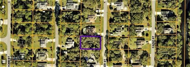 Rohrer Street, North Port, FL 34286 (MLS #C7449296) :: Delgado Home Team at Keller Williams