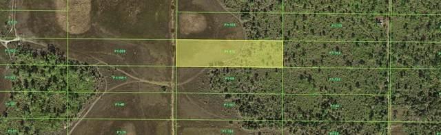 33518 Oil Well Road, Punta Gorda, FL 33955 (MLS #C7449329) :: The Duncan Duo Team