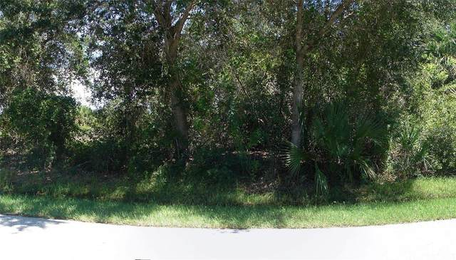7316 Donahue Street, Port Charlotte, FL 33981 (MLS #C7449419) :: Delgado Home Team at Keller Williams