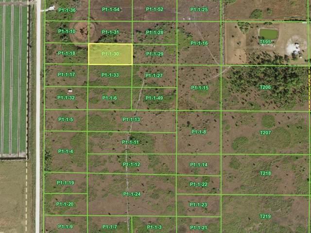 48117 Bermont Road, Punta Gorda, FL 33982 (MLS #C7449504) :: Medway Realty