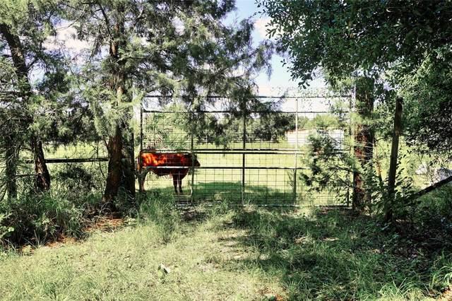 SE Langfang Avenue, Arcadia, FL 34266 (MLS #C7449505) :: Keller Williams Suncoast