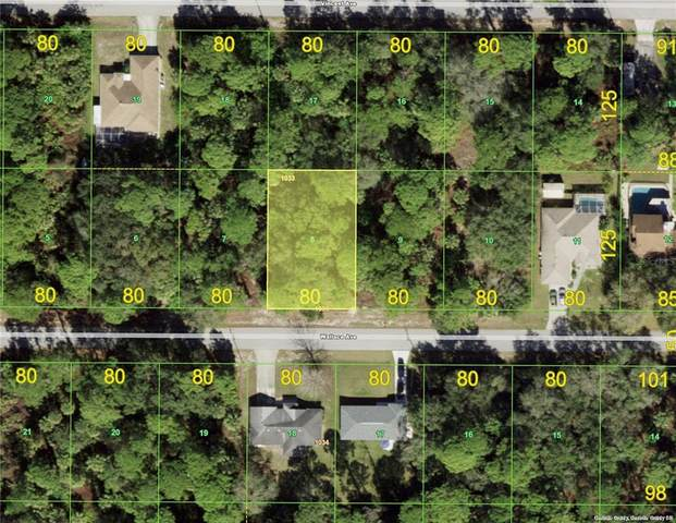 18156 Wallace Avenue, Port Charlotte, FL 33954 (MLS #C7449516) :: Medway Realty