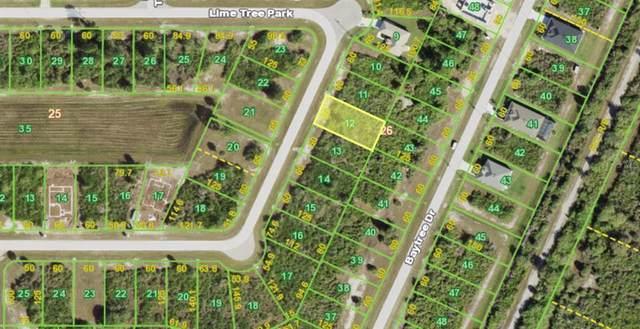 126 Lime Tree Park, Rotonda West, FL 33947 (MLS #C7449636) :: Carmena and Associates Realty Group