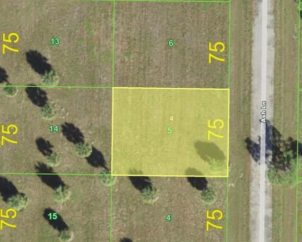 9 Ash Lane, Placida, FL 33946 (MLS #C7449729) :: Carmena and Associates Realty Group