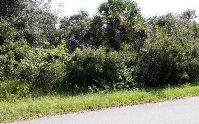 1468 Mottley Street, Port Charlotte, FL 33953 (MLS #C7449843) :: Delgado Home Team at Keller Williams