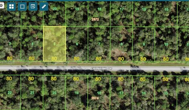 13070 Chiminiello Drive, Port Charlotte, FL 33953 (MLS #C7449858) :: Delgado Home Team at Keller Williams