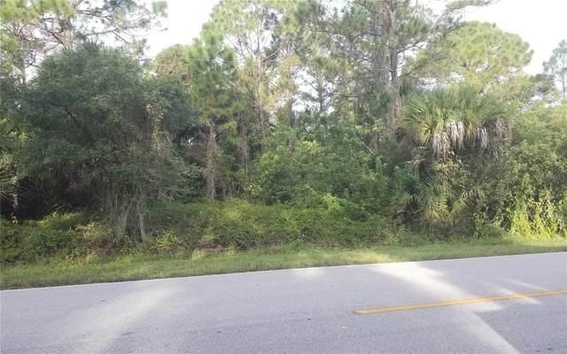 79 Ravenswood Boulevard, Port Charlotte, FL 33954 (MLS #C7449893) :: Everlane Realty
