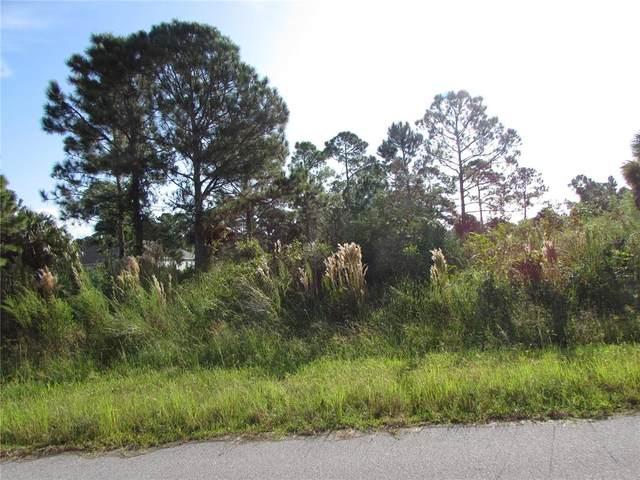 482 Fellenz Street, Port Charlotte, FL 33953 (MLS #C7449908) :: Delgado Home Team at Keller Williams