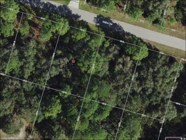 Balboa Terrace, North Port, FL 34291 (MLS #C7449960) :: Delgado Home Team at Keller Williams