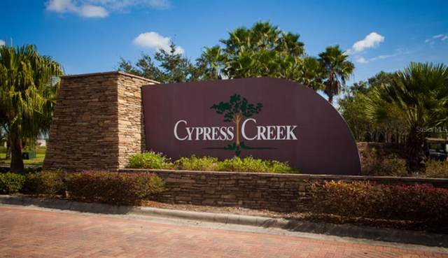 15408 Lost Creek Lane, Ruskin, FL 33573 (MLS #C7449963) :: The Duncan Duo Team