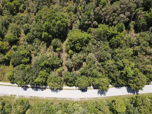 5025 S Fairway Drive, Punta Gorda, FL 33982 (MLS #C7449977) :: Global Properties Realty & Investments