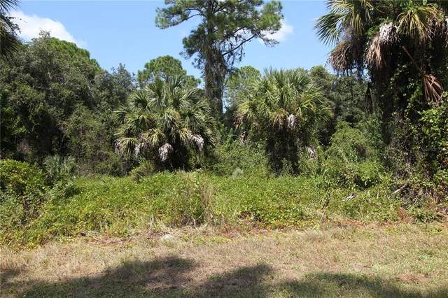 S Biscayne Drive, North Port, FL 34287 (MLS #C7450140) :: Global Properties Realty & Investments