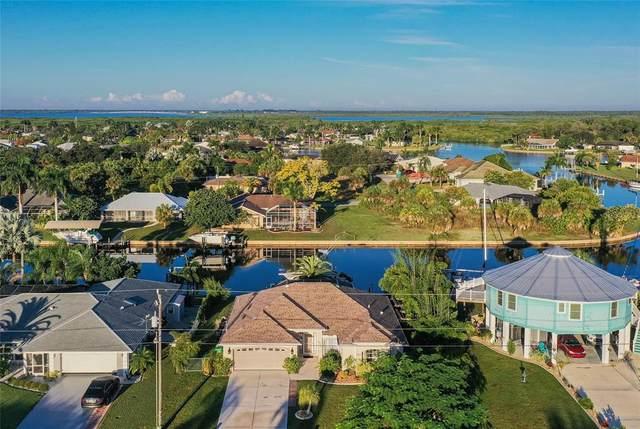 4201 Flamingo Boulevard, Port Charlotte, FL 33948 (MLS #C7450160) :: Global Properties Realty & Investments