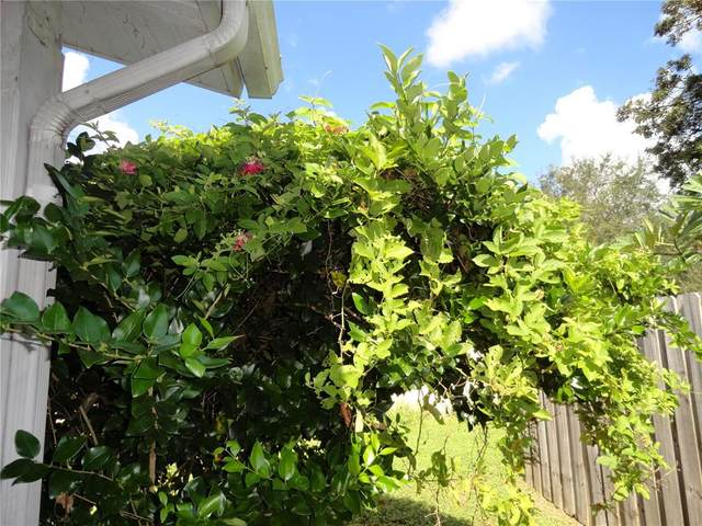 684 Ellicott Circle NW, Port Charlotte, FL 33952 (MLS #C7450209) :: MavRealty