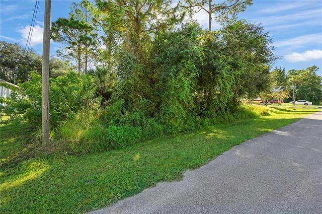 Cranbrook Avenue, North Port, FL 34286 (MLS #C7450392) :: Lockhart & Walseth Team, Realtors