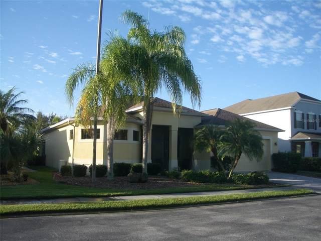 24413 Lakeview Place, Port Charlotte, FL 33980 (MLS #C7450455) :: Heckler Realty