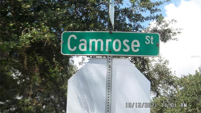 415 Camrose Street, Port Charlotte, FL 33954 (MLS #C7450512) :: Keller Williams Realty Peace River Partners