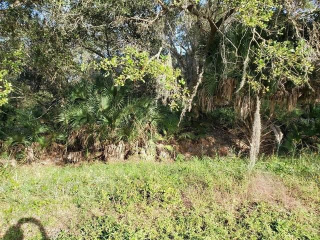 3664 Flamingo Boulevard, Port Charlotte, FL 33948 (MLS #C7450676) :: Keller Williams Realty Select