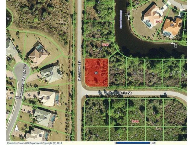 2210 Mccleod Street, Port Charlotte, FL 33953 (MLS #D5903390) :: Griffin Group