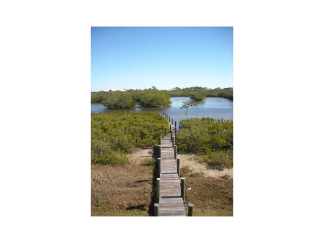12461 Coral Vista Cir, Placida, FL 33946 (MLS #D5914740) :: The BRC Group, LLC