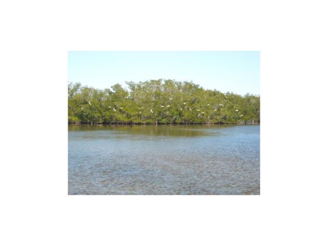 12471 Coral Vista Cir, Placida, FL 33946 (MLS #D5914743) :: The BRC Group, LLC