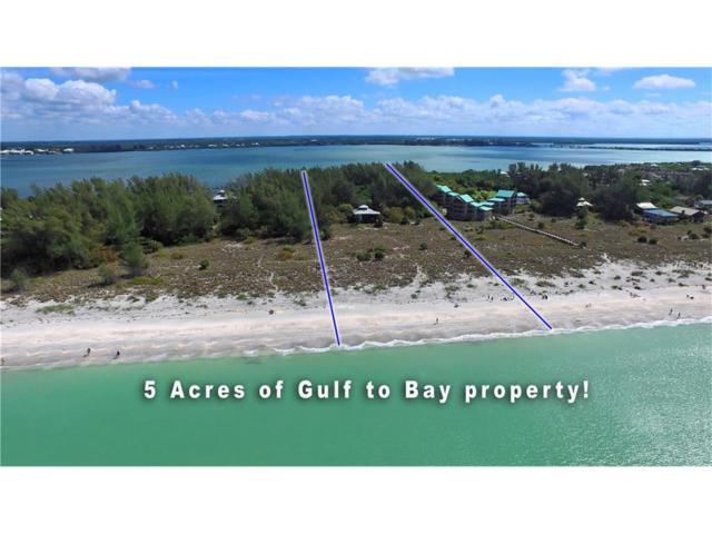 9188 Little Gasparilla Island, Placida, FL 33946 (MLS #D5917222) :: The BRC Group, LLC