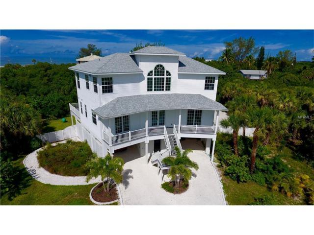 53 Palm Drive, Placida, FL 33946 (MLS #D5917612) :: The BRC Group, LLC