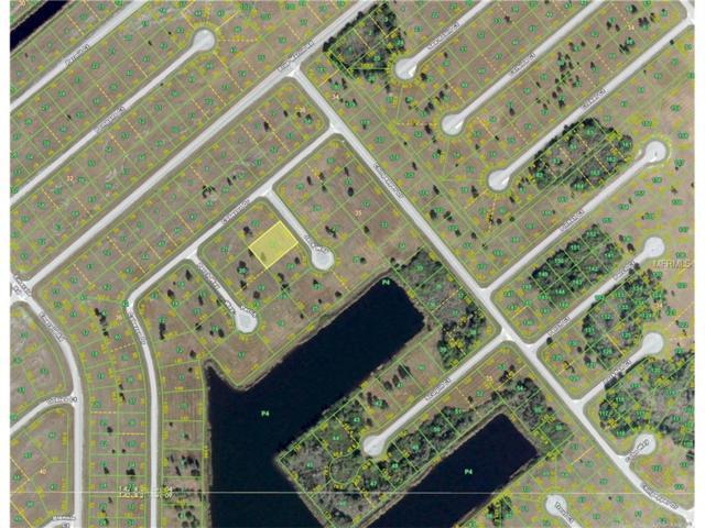 12431 Jack Way, Placida, FL 33946 (MLS #D5919042) :: The BRC Group, LLC