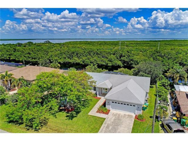 5260 Early Terrace, Port Charlotte, FL 33981 (MLS #D5919672) :: Medway Realty