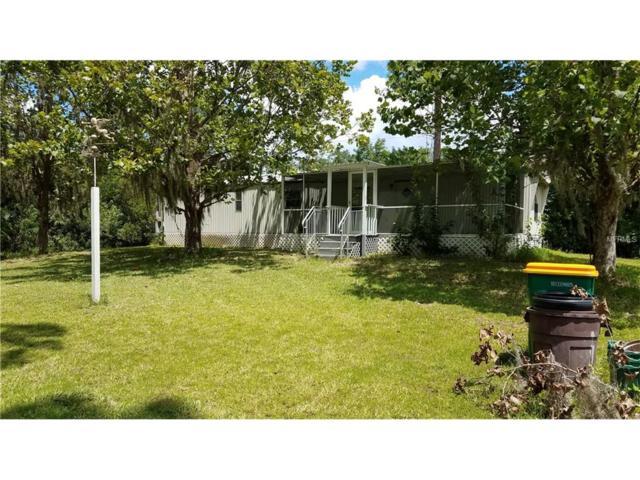 3522 Gainsboro Road, Port Charlotte, FL 33953 (MLS #D5919788) :: White Sands Realty Group