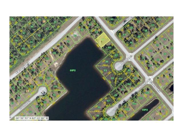 12311 Emerald Road, Placida, FL 33946 (MLS #D5919860) :: The BRC Group, LLC