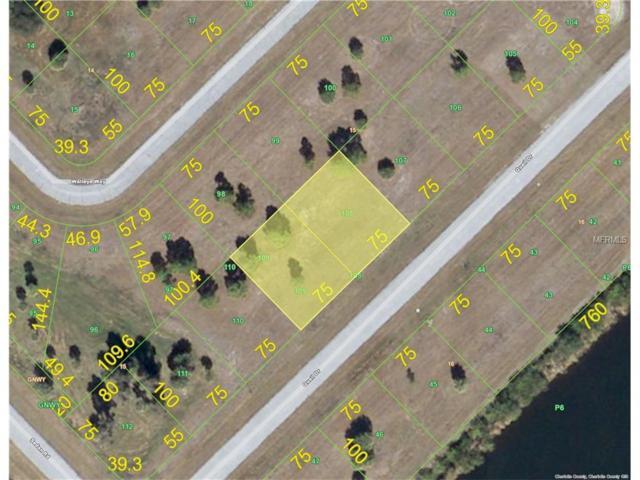 12279 Quail Drive, Placida, FL 33946 (MLS #D5920142) :: The BRC Group, LLC